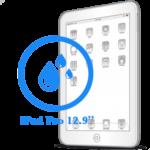 Чистка iPad Pro 12.9ᐥ после попадания влаги