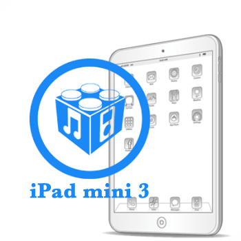 Ремонт Ремонт iPad iPad mini 3 Перепрошивка