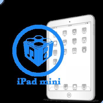 Перепрошивка iPad mini