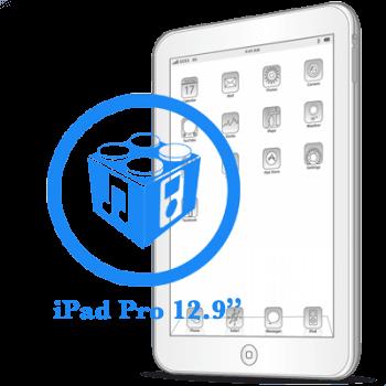 Ремонт Ремонт iPad iPad Pro 12.9ᐥ Перепрошивка