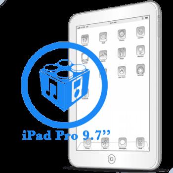 Ремонт Ремонт iPad iPad Pro 9.7ᐥ Перепрошивка