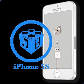 Ремонт iPhone 5S Перепрошивка