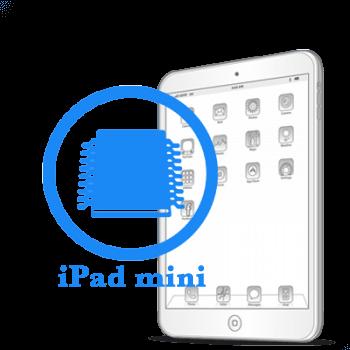 iPad mini Ребол/замена флеш памяти