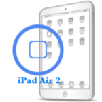 iPad - Ремонт кнопки Home Air 2