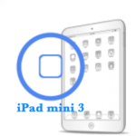 Ремонт кнопки Home iPad mini 3
