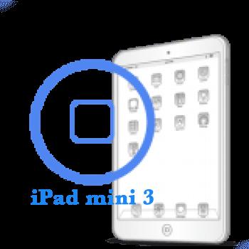Ремонт Ремонт iPad iPad mini 3 Ремонт кнопки Home
