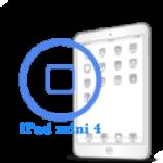 Ремонт Ремонт iPad iPad mini 4 Ремонт кнопки Home