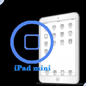 iPad mini - Ремонт кнопки Home в
