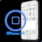 iPhone 5S - Замена кнопки Home в