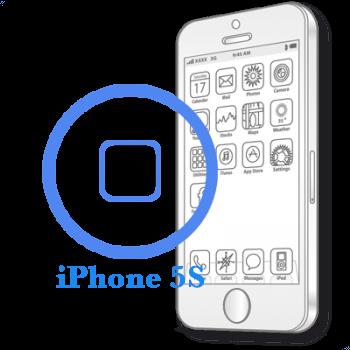 Ремонт iPhone 5S Замена кнопки Home в