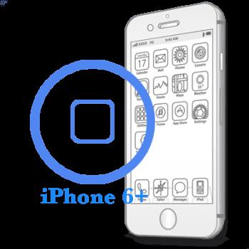 iPhone 6 Plus - Замена кнопки Home в