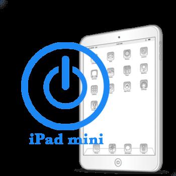 iPad - Ремонт кнопки включения (блокировки) mini
