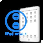 Ремонт Ремонт iPad iPad mini 4 Ремонт кнопок громкости