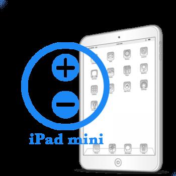iPad mini Ремонт кнопок громкости