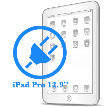Ремонт разъёма синхронизации (зарядки) iPad Pro 12.9ᐥ
