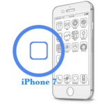 iPhone 7- Замена (ремонт) кнопки HomeiPhone