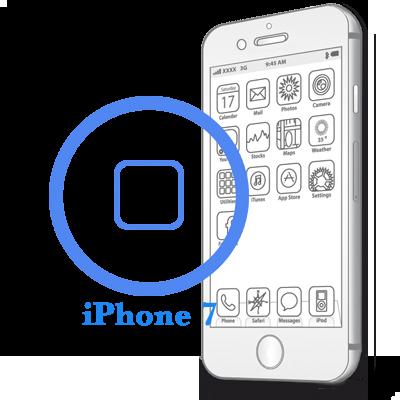 iPhone 7 - Замена (ремонт) кнопки HomeiPhone 7