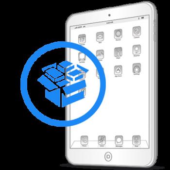 Резервное копирование данных iPad Air 2