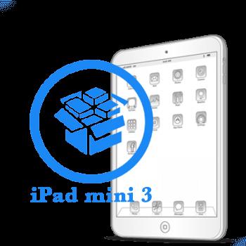 mini 3 iPad - Резервное копирование данных