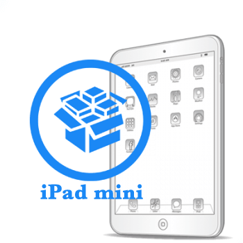 iPad - Резервное копирование данных mini