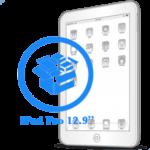 iPad Pro - Резервное копирование данных 12.9ᐥ