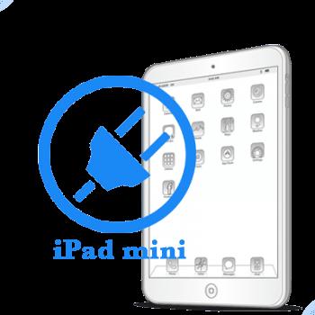 iPad mini Ремонт разъёма синхронизации (зарядки)