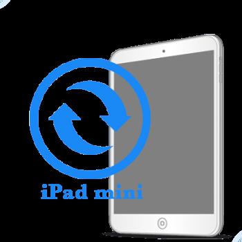 iPad mini Восстановление подсветки экрана (на дисплее)