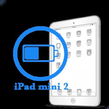 Замена батареи (аккумулятора) iPad mini Retina
