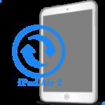 Ремонт Ремонт iPad iPad Air 2 Замена экрана (дисплея)
