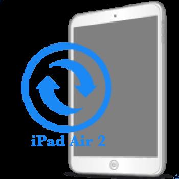iPad Air 2 Замена экрана (дисплея)