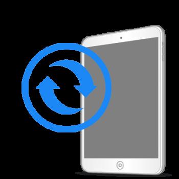 Замена экрана (дисплея) iPad mini
