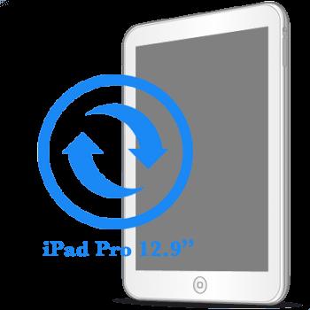 iPad Pro 12.9ᐥ Замена экрана (дисплея)