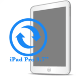 iPad Pro - Заміна екрану (дисплею) 9.7ᐥ