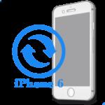 iPhone 6 - Замена экрана (дисплея) копия