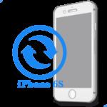 iPhone 6S - Замена экрана (дисплея) копия