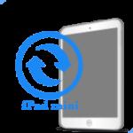 iPad - Замена экрана (дисплея) mini