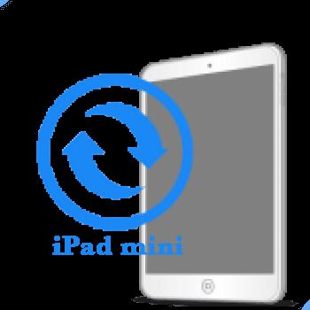 iPad mini Замена экрана (дисплея)