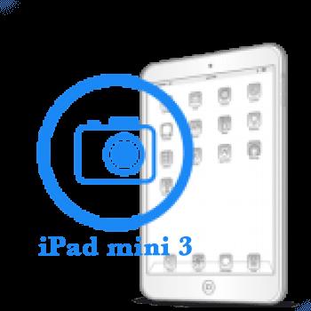 iPad - Замена фронтальной (передней) камеры mini 3