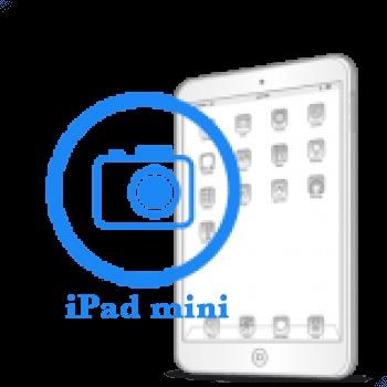 Замена фронтальной (передней) камеры iPad mini