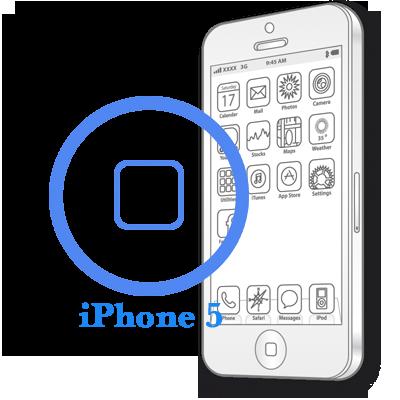 iPhone 5 - Замена кнопки Home в