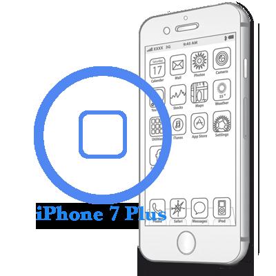 7 Plus iPhone - Ремонт кнопки HomeiPhone