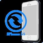 iPhone 5S- Замена контроллера изображения (подсветки)