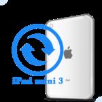 Ремонт Ремонт iPad iPad mini 3 Замена корпуса