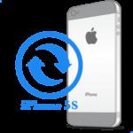 iPhone 5S - Заміна корпусу