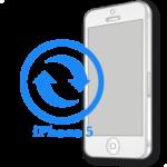 Замена контроллера изображения (подсветки) iPhone 5