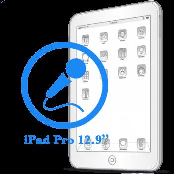 iPad Pro 12.9ᐥ Замена микрофона
