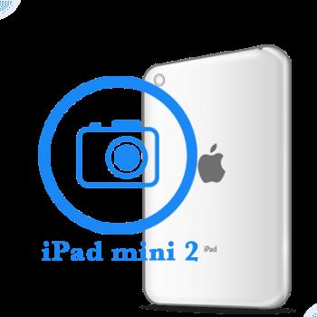 iPad - Замена основной камеры mini Retina