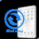 iPad mini- Замена стекла (тачскрина)