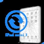 mini 3 iPad - Замена стекла Mini 3