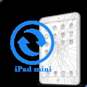 iPad mini - Замена стекла (тачскрина)